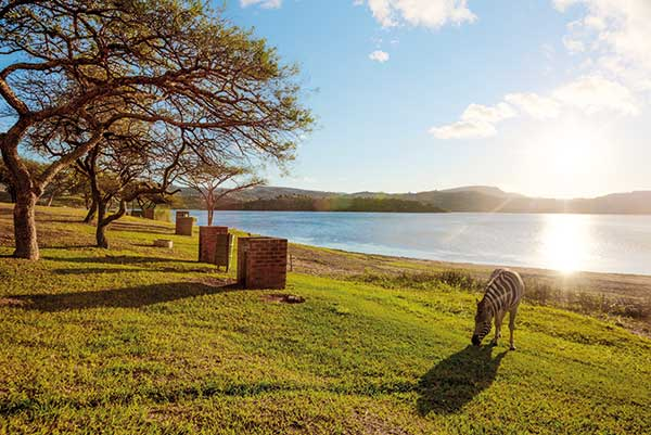 Msinsi Resorts And Game Reserves Durban For All Seasons